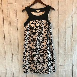 *FLAW* LOFT | 8 | Black & White Cotton Dress
